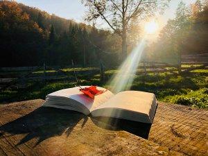 The Holy Spirit and Careful Thinking
